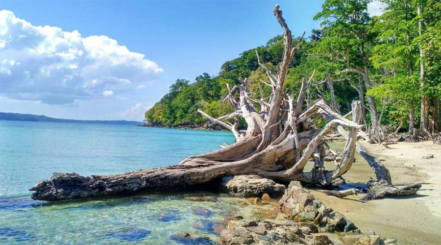 Chidia Tapu Beach