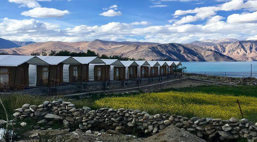 Ladakh camp Near lake