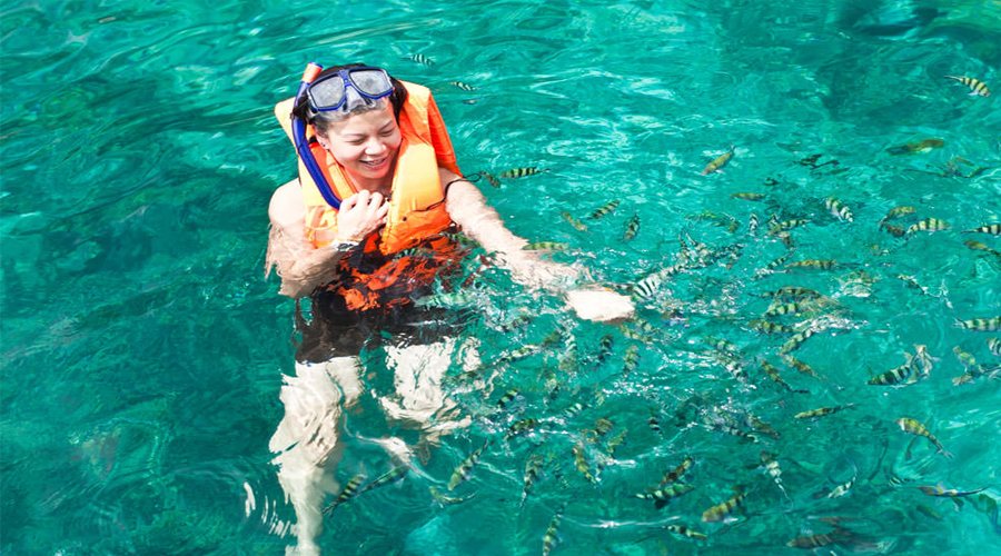 Marine Park Swimming