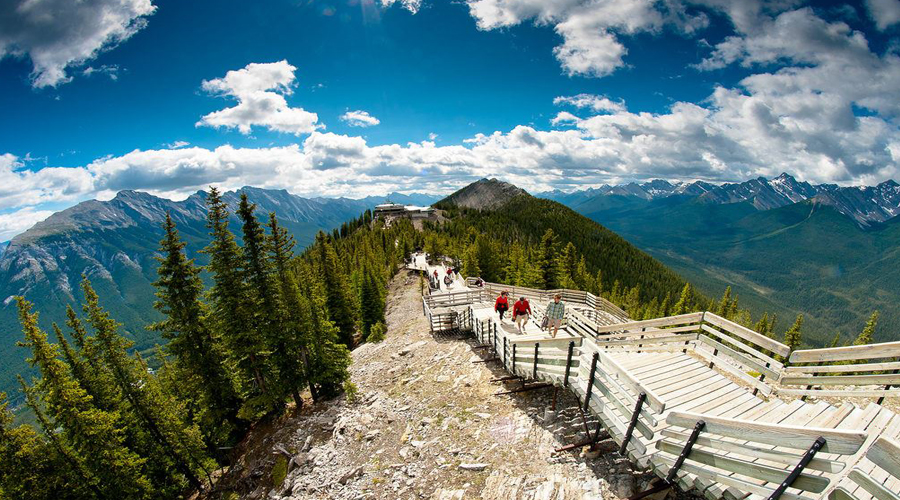Sulphur mountain, jasper