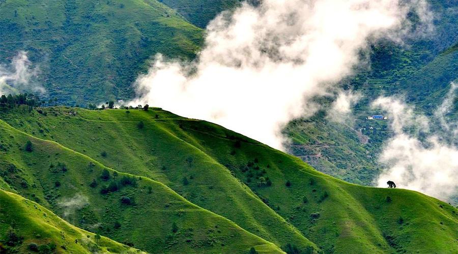 Chail Shimla