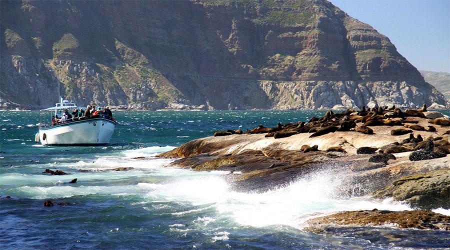 Duiker Island Capetown