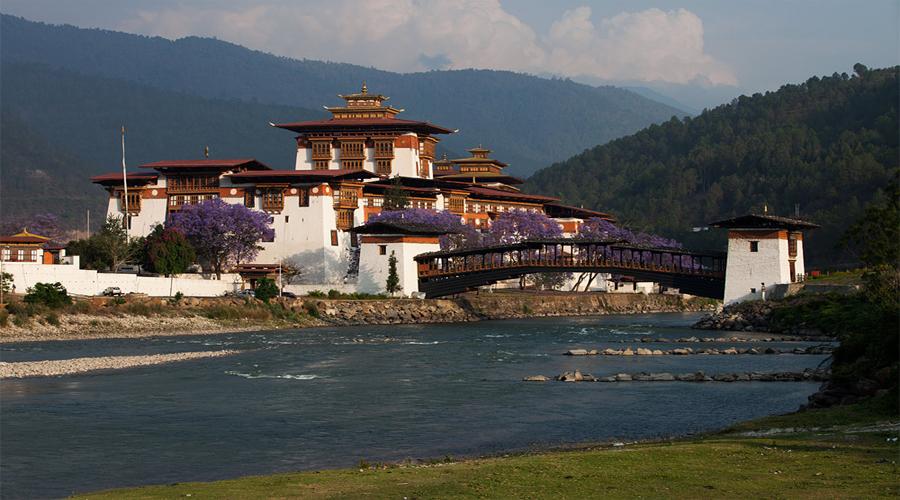 Punakha Dzone