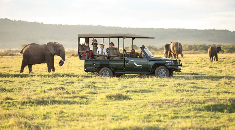 Safari Maasai Mara Game Reserve