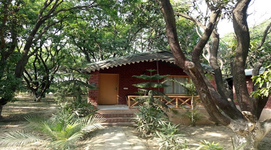 Baghaan Resort Retreat