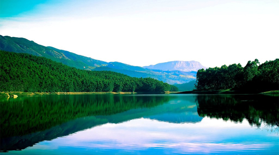 Eco dam Munnar 1