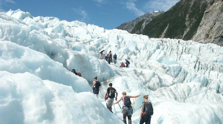 Fox Glacier1