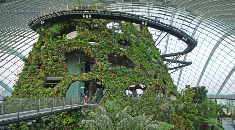 Cloud Forest Conservatory , Singapore