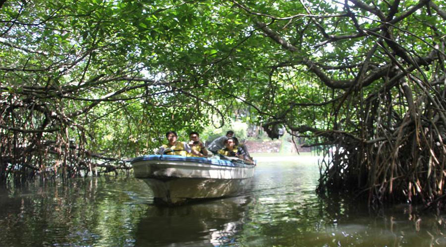 Madhu River