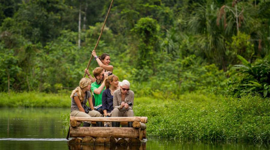 Amazonica view