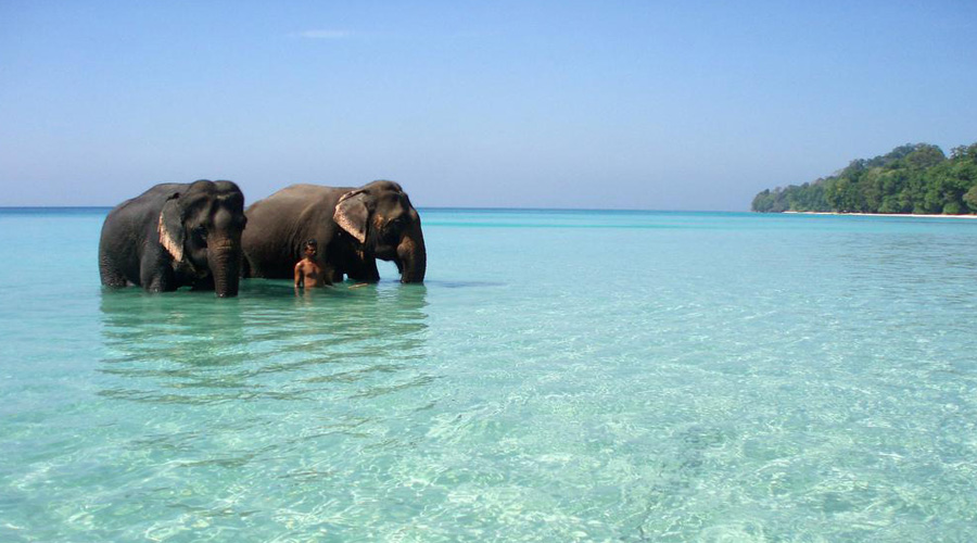 Elephant Beach ,Havelock