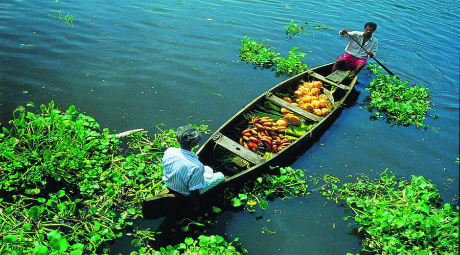 Small Boat at Alleppey