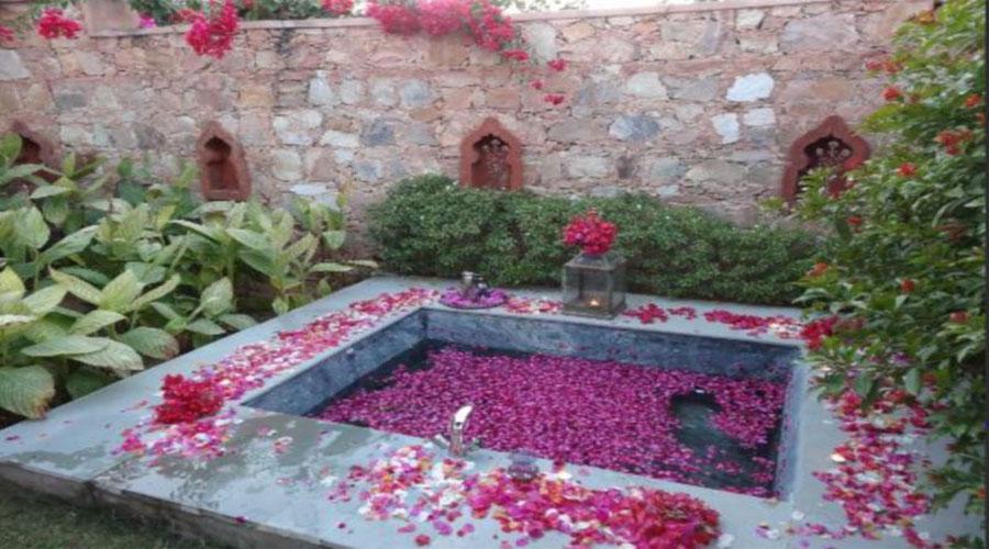 Tree of Life Resorts in Jaipur