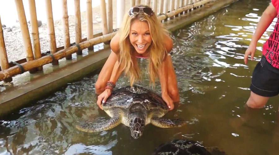 Turtle Farm bali