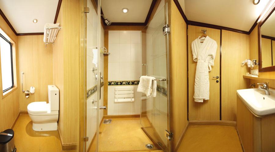 Washroom Maharaja Express