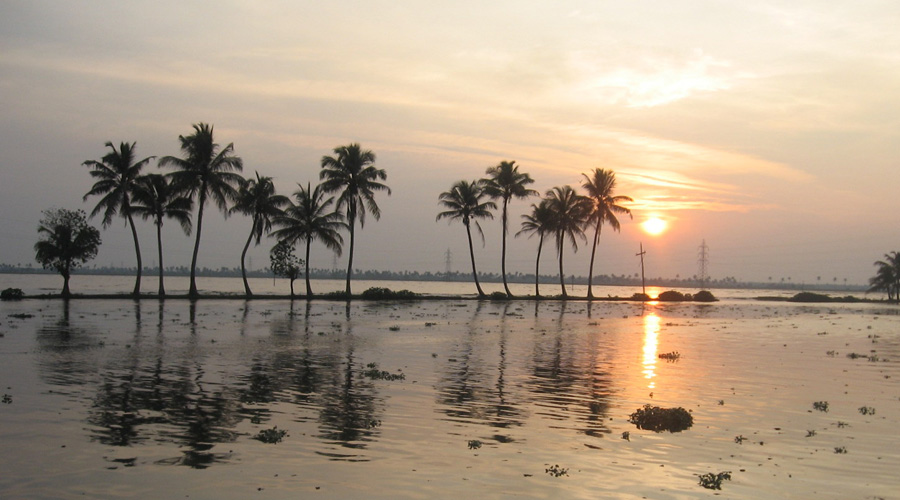 Backwater Alleppey3