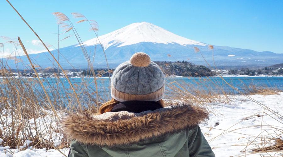 Mt. Fuji & Hakone Tour, Tokyo