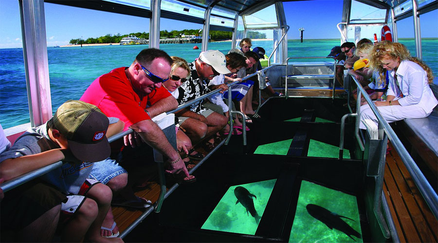 Glass Bottom Boat during Big Cat Reef Island
