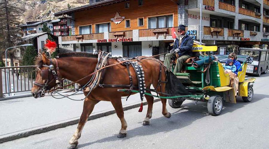 Horse Ride, Interlaken