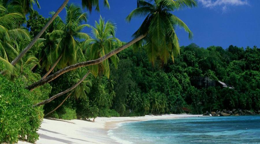 Iarge Island