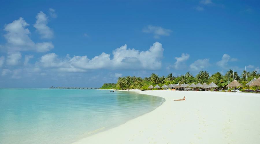 Island Hamilton
