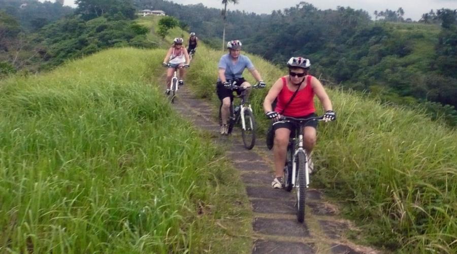 Jatiluwih Rice Paddy Cycling