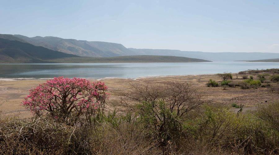 Nukuru Lake