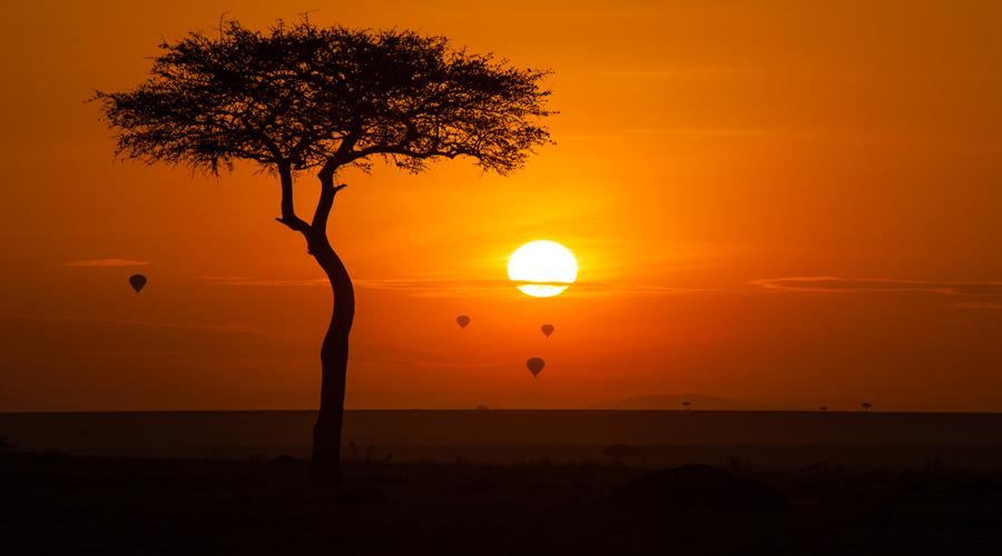 masai mara sunset view