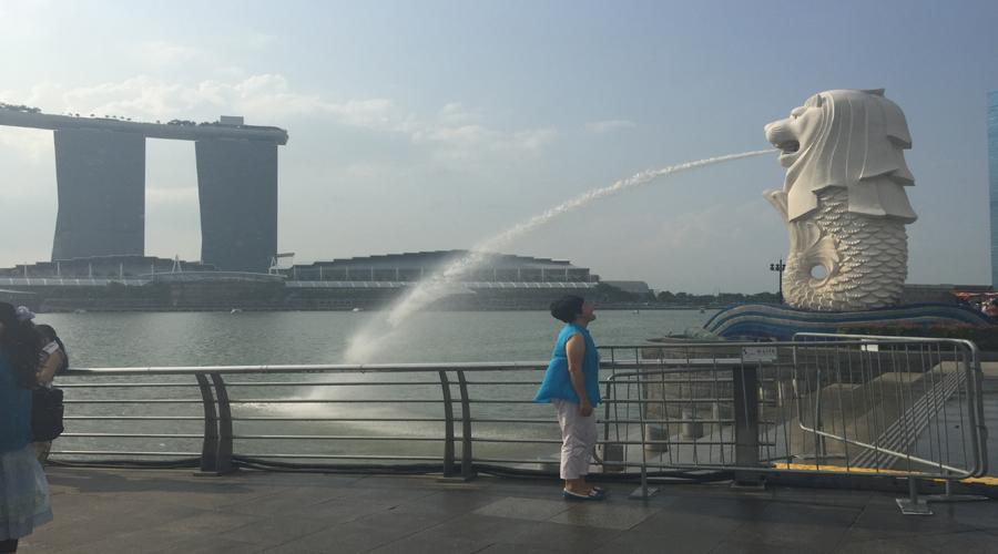 Melion Park, Singapore