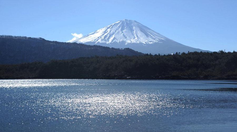 Mt. Fuji & Hakone Tour Tokyo