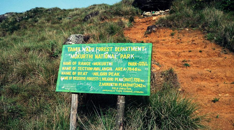 Mukurthi peak