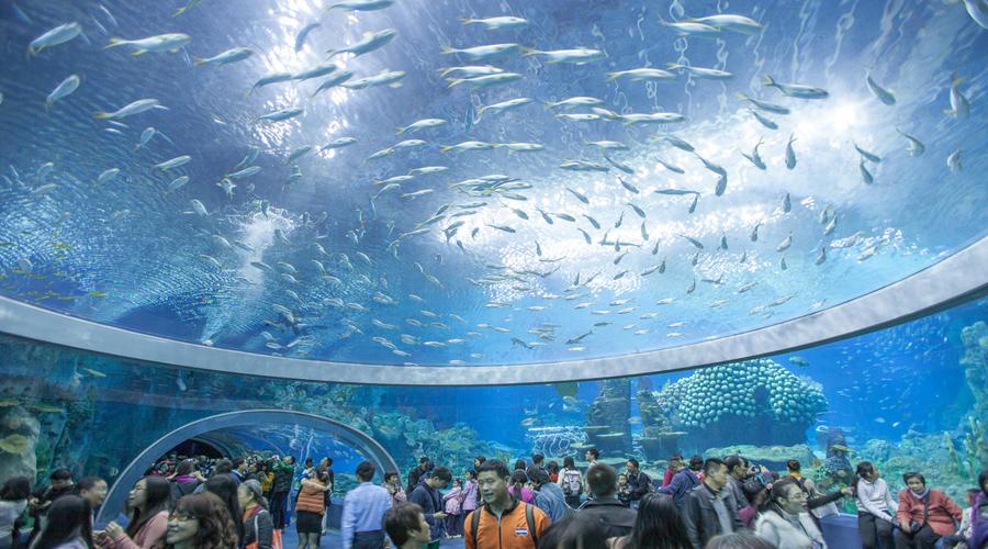 Ocean park Chimelong