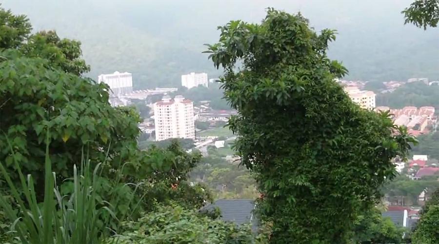 pearl hill