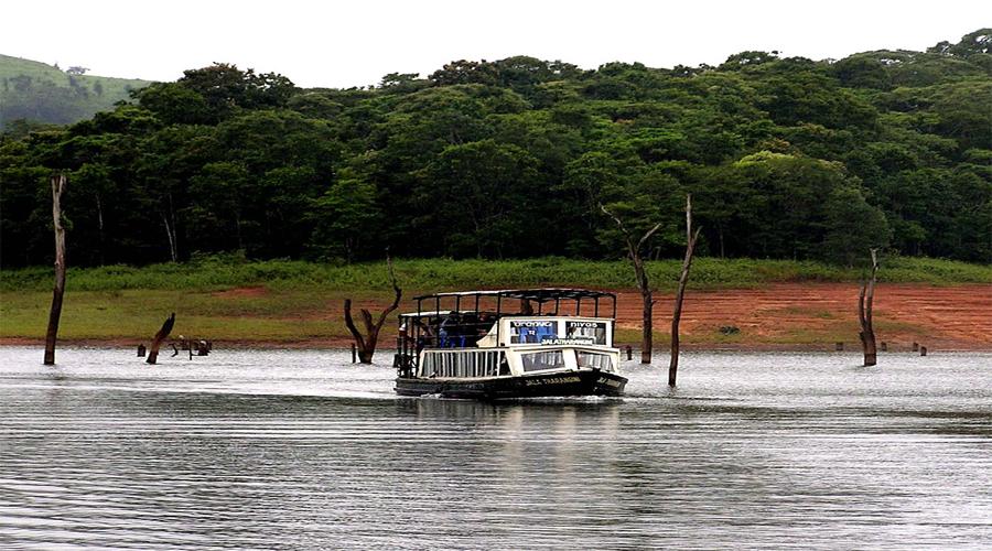 Periyar Lake Thekkady 4