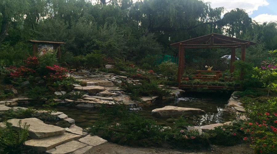 Royal Botanical Park, Paro