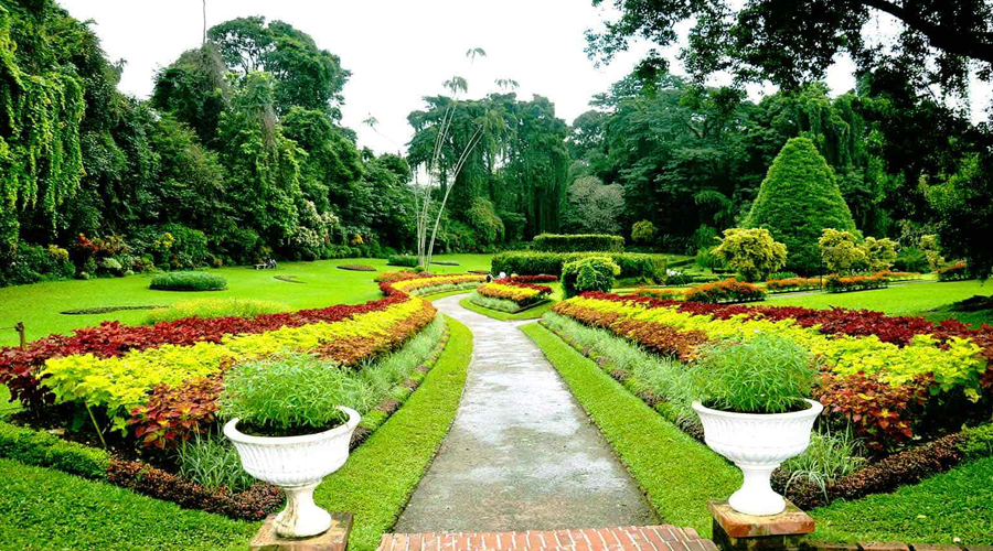 Royal Botanical Garden, Hakgala