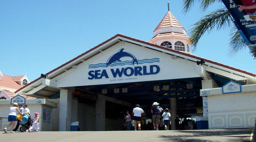 Sea World, Gold Coast