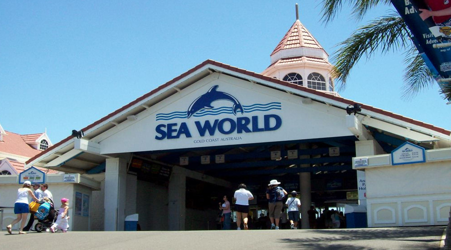 Sea World, Gold Caost