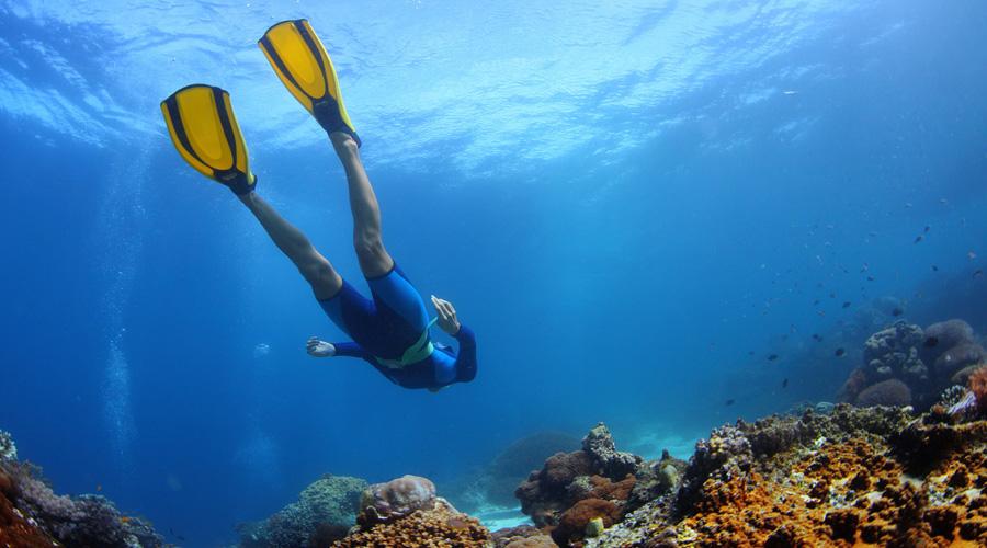 Snorkelling, ibiza
