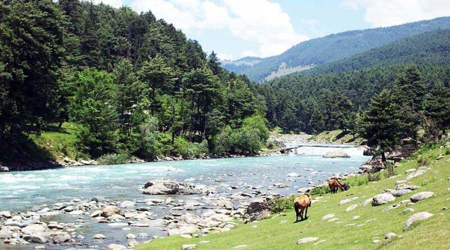 Valley of Shepherds in Pahalgam