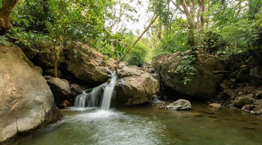 Waterfall, Rishikesh