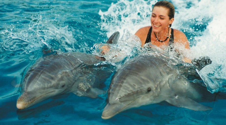 Swim with Dolphin Tour