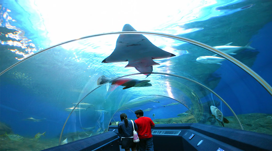 Underwater World Aquarium,Pattaya